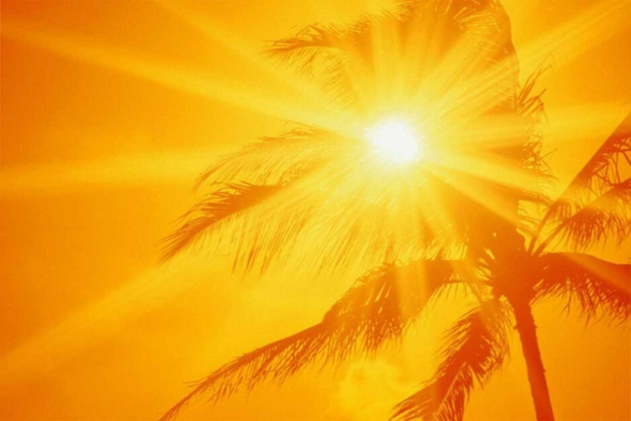 A hot summer sky on palm tree, highlighting how hot weather affects pain.